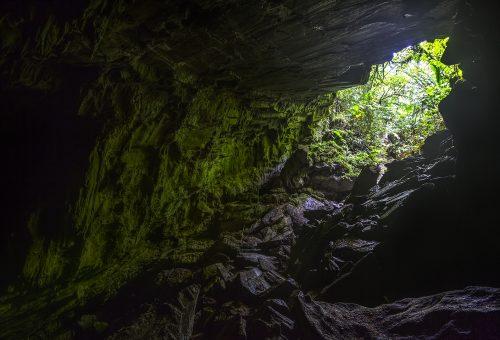 Aripo Cave